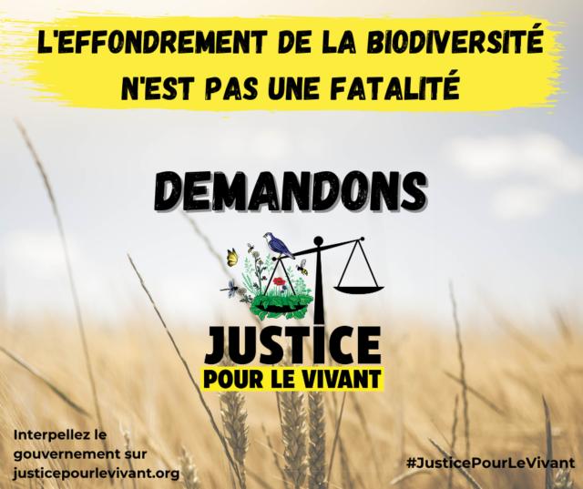 JusticePourLeVivant-Post-Facebook-2